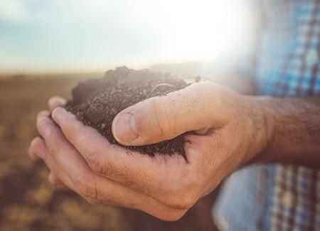 Attività connesse con le agricole, i chiarimenti dell'Agenzia